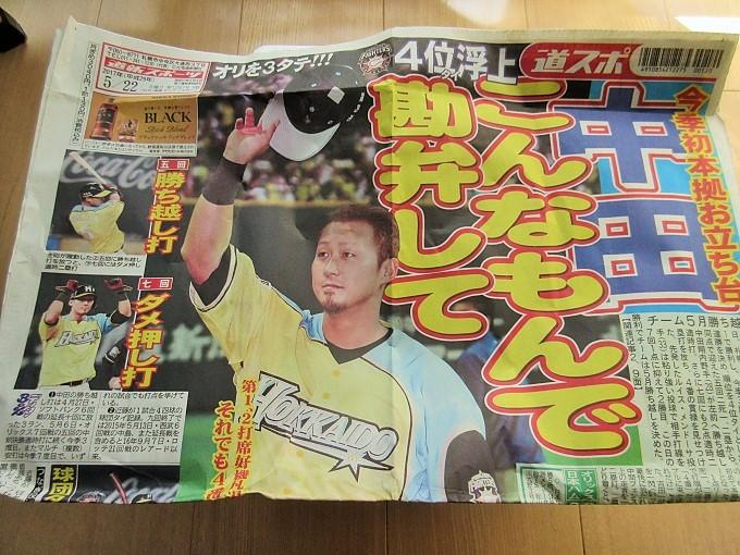 【ふるさと納税】道新スポーツ